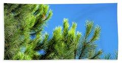 Adriatic Pine Against Blue Sky  Bath Towel