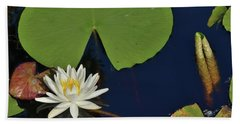 American Water Lily Hand Towel