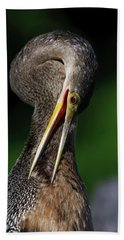 Anhinga Combing Feathers Bath Towel