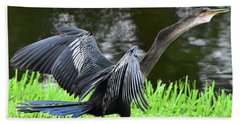 Anhinga Surprise Bath Towel