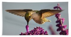 Anna's Hummingbird Sipping Nectar From Salvia Flower Bath Towel