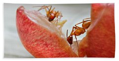 Ants Bath Towel
