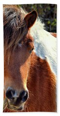 Hand Towel featuring the photograph Assateague Pinto Mare Ms Macky by Bill Swartwout Fine Art Photography