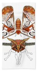 Atlas Moth3 Hand Towel