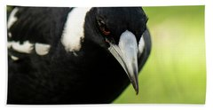 Australian Magpie Outdoors Bath Towel