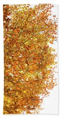 Autumn Explosion 2 Hand Towel