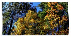 Autumn In Apache Sitgreaves National Forest, Arizona Bath Towel