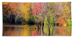 Bath Towel featuring the photograph Autumn Reflections At Alum Creek by Angela Murdock