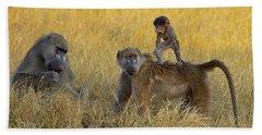 Baboons In Botswana Hand Towel