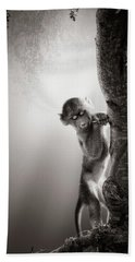 Baby Baboon Hand Towel