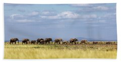 Baby Elephants Leading Herd In Line In Kenya Hand Towel