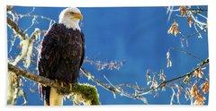 Backlit Bald Eagle In Squamish Bath Towel