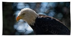 Bald Eagle Grandfather Mountain Bath Towel