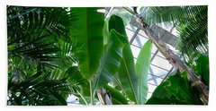 Banana Leaves In The Greenhouse Hand Towel