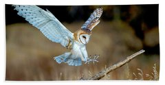 Barn Owl Landing Hand Towel