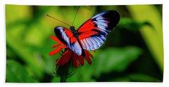 Beautiful Butterfly Hand Towel