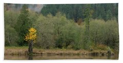 Beaver Pond Reflected Hand Towel