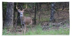 Big Buck Hand Towel