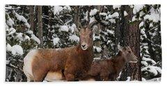 Bighorn Sheep In Deep Snow Bath Towel