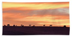 Bison Elk Panorama Hand Towel