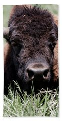Bison In Custer State Park South Dakota Bath Towel