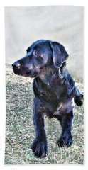 Black Labrador Retriever - Daisy Hand Towel
