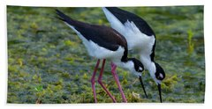 Black-necked Stilts Bath Towel