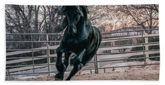 Black Stallion Cantering Hand Towel