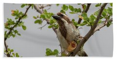 Black-throated Barbet Hand Towel
