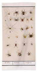 Blad Met Spinnen Hand Towel