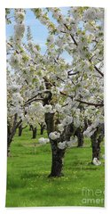 Blossoming Spring Day Bath Towel