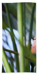 Hand Towel featuring the photograph Blue-bellied Roller by Whitney Goodey