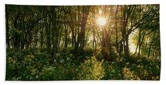 Blue Ridge Parkway - Last Of Summers Light, North Carolina Bath Towel