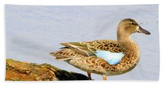 Blue-winged Teal Female Duck Bath Towel