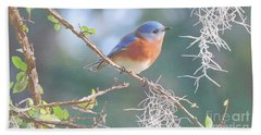 Bluebird In Dixie  Hand Towel