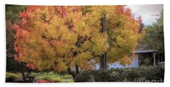 Brilliant Fall Color Tree Yellows Oranges Seasons  Hand Towel