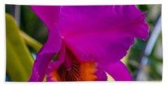 Brilliant Orchid Hand Towel