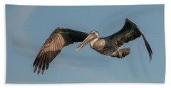 Brown Pelican In Flight Hand Towel