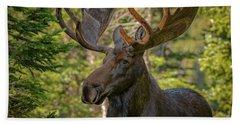 Bull Moose Glamour Shot Bath Towel