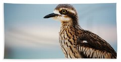Bush Stone-curlew Resting On The Beach. Hand Towel
