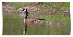 Canada Goose And Goslings Hand Towel