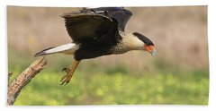 Caracara Taking Off Bath Towel