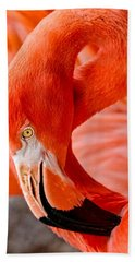 Caribbean Flamingo Hand Towel