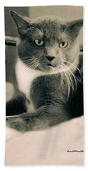 Cat Boticas Portrait  7 Hand Towel