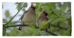 Cedar Waxwings Hand Towel