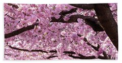 Cherry Blossom Trees Hand Towel