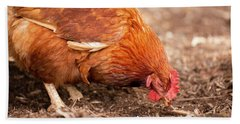 Chicken On The Farm Hand Towel