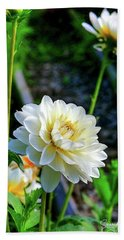 Chrysanthemum In Bloom Hand Towel