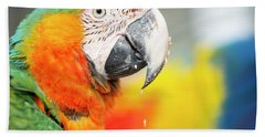 Close Up Of The Macaw Bird. Bath Towel