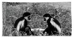 Colobus Monkeys Playing Bath Towel
